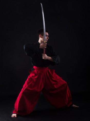 Iaido Practice